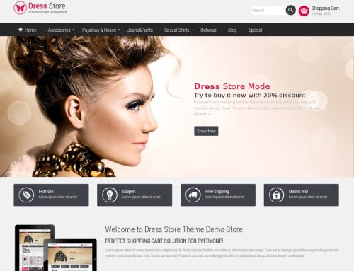 DressStore Design – Verkaufen wie die Großen